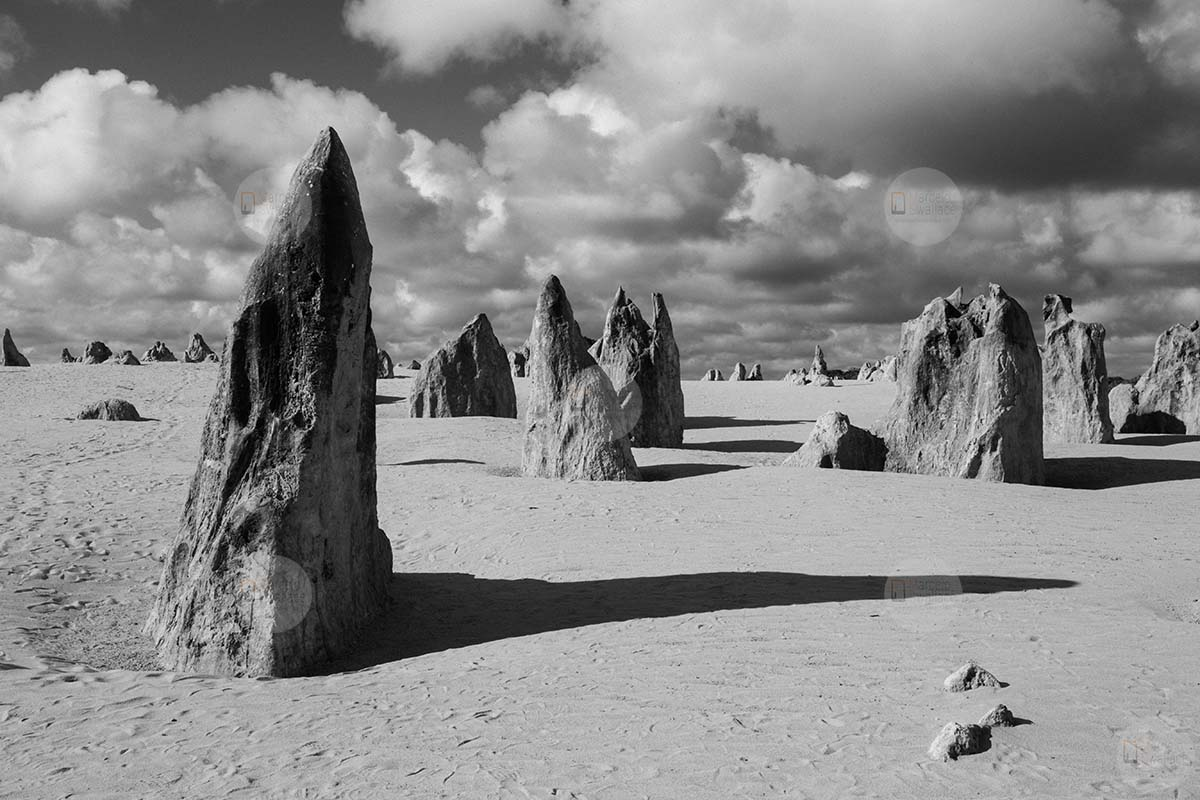 Pinnacles desert - Nambung National Park - Western Australia