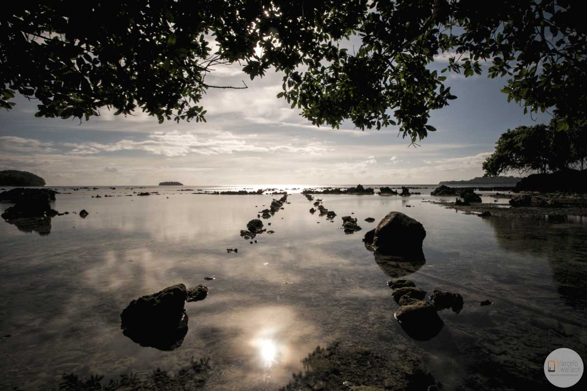 travel to vanuatu
